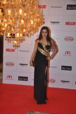kehkashan Patel at Hello hall of  fame awards 2013 in Palladium Hotel, Mumbai on 24th Nov 2013(356)_52934991ea809.JPG