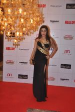 kehkashan Patel at Hello hall of  fame awards 2013 in Palladium Hotel, Mumbai on 24th Nov 2013(357)_5293499133fc6.JPG