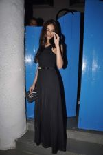 Ileana Dcruz at Finding Fanny Movie Completion Bash in Olive, Mumbai on 27th Nov 2013
