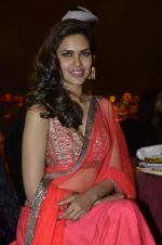 Esha Gupta at Saif Belhasa Holdings Masala Awards on 29th Nov 2013