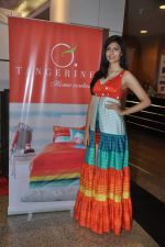 Vanya Mishra walks for Tangerine Home couture in Mumbai on 30th Nov 2013 (45)_529b220061b6b.JPG