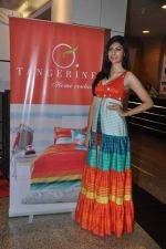 Vanya Mishra walks for Tangerine Home couture in Mumbai on 30th Nov 2013 (46)_529b21fc8fdd5.JPG