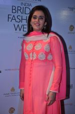 on Day 6 at Bridal Fashion Week 2013 in Grand Hyatt, Mumbai on 4th Dec 2013 (263)_52a038cf7a61e.JPG