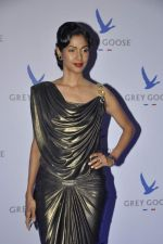 Nethra Raghuraman at Grey Goose in association with Noblesse fashion bash in Four Seasons, Mumbai on 10th Dec 2013 (92)_52a81070930bb.JPG
