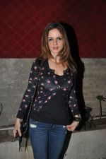 Suzanne Roshan at Ashiesh Shah curated art show in Pali Village cafe, Mumbai on 12th Dec 2013 (34)_52aaba693f366.JPG