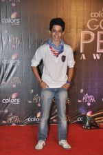 Darsheel Safary at Colors Golden Petal Awards 2013 in BKC, Mumbai on 14th Dec 2013 (87)_52ad7b18266f0.JPG