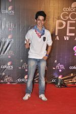 Darsheel Safary at Colors Golden Petal Awards 2013 in BKC, Mumbai on 14th Dec 2013 (90)_52ad7b1be2878.JPG