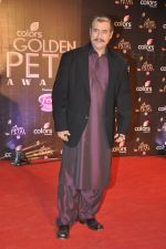 Puneet Issar at Colors Golden Petal Awards 2013 in BKC, Mumbai on 14th Dec 2013 (177)_52ad7cc8e6734.JPG