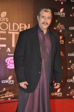 Puneet Issar at Colors Golden Petal Awards 2013 in BKC, Mumbai on 14th Dec 2013 (178)_52ad7cc949c28.JPG