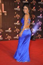 Sreejita De at Colors Golden Petal Awards 2013 in BKC, Mumbai on 14th Dec 2013 (171)_52ad7d2bb2605.JPG