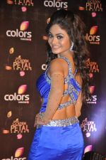 Sreejita De at Colors Golden Petal Awards 2013 in BKC, Mumbai on 14th Dec 2013 (172)_52ad7d2c796a0.JPG