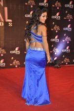 Sreejita De at Colors Golden Petal Awards 2013 in BKC, Mumbai on 14th Dec 2013 (169)_52ad7d2a0d09d.JPG