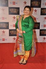 Apara Mehta at Big Star Awards red carpet in Andheri, Mumbai on 18th Dec 2013 (192)_52b2d07b0bff0.JPG