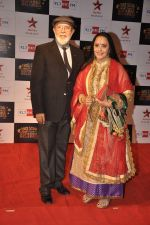 Ila Arun at Big Star Awards red carpet in Andheri, Mumbai on 18th Dec 2013 (126)_52b2d29c06742.JPG