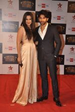 Mrinalini Sharma at Big Star Awards red carpet in Andheri, Mumbai on 18th Dec 2013 (169)_52b2d387d2311.JPG
