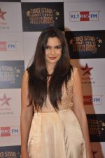 Mrinalini Sharma at Big Star Awards red carpet in Andheri, Mumbai on 18th Dec 2013 (176)_52b2d38b72c20.JPG
