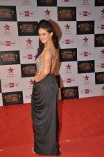 Shakti Mohan at Big Star Awards red carpet in Andheri, Mumbai on 18th Dec 2013 (18)_52b2d424de7e5.JPG
