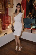 at Bandra 190 store launch in Bandra, Mumbai on 18th 2013 (18)_52b2cc743cdc0.JPG