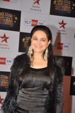 at Big Star Awards red carpet in Andheri, Mumbai on 18th Dec 2013 (189)_52b2d0fae79a9.JPG