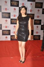 at Big Star Awards red carpet in Andheri, Mumbai on 18th Dec 2013 (204)_52b2d0c816305.JPG