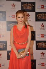 at Big Star Awards red carpet in Andheri, Mumbai on 18th Dec 2013 (246)_52b2d0c9ed05c.JPG
