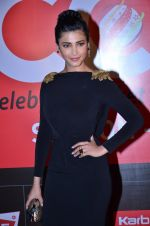 Shruti hassan at CCL new season red carpet in Grand Hyatt, Mumbai on 20th Dec 2013