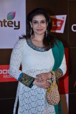 at CCL new season red carpet in Grand Hyatt, Mumbai on 20th Dec 2013 (160)_52b5454bb63f2.JPG