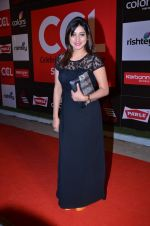 at CCL new season red carpet in Grand Hyatt, Mumbai on 20th Dec 2013 (169)_52b5455004b3b.JPG