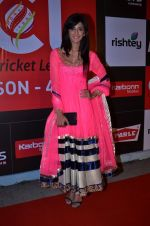 at CCL new season red carpet in Grand Hyatt, Mumbai on 20th Dec 2013 (183)_52b5455587a2a.JPG