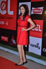 at CCL new season red carpet in Grand Hyatt, Mumbai on 20th Dec 2013 (200)_52b54558c3509.JPG