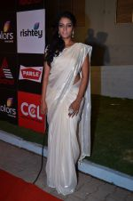 at CCL new season red carpet in Grand Hyatt, Mumbai on 20th Dec 2013 (211)_52b5455d6988f.JPG