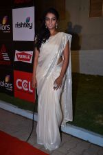 at CCL new season red carpet in Grand Hyatt, Mumbai on 20th Dec 2013 (212)_52b5455e0b084.JPG