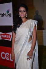 at CCL new season red carpet in Grand Hyatt, Mumbai on 20th Dec 2013 (214)_52b5455f65839.JPG
