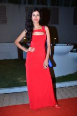 at CCL new season red carpet in Grand Hyatt, Mumbai on 20th Dec 2013 (219)_52b54560f36cf.JPG