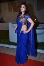 at CCL new season red carpet in Grand Hyatt, Mumbai on 20th Dec 2013 (223)_52b5456230d86.JPG