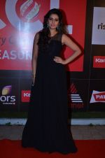 at CCL new season red carpet in Grand Hyatt, Mumbai on 20th Dec 2013 (38)_52b5452153f0d.JPG