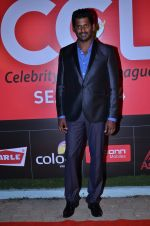 at CCL new season red carpet in Grand Hyatt, Mumbai on 20th Dec 2013 (48)_52b5452633d65.JPG