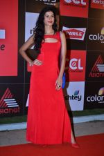 at CCL new season red carpet in Grand Hyatt, Mumbai on 20th Dec 2013 (54)_52b54528eca36.JPG
