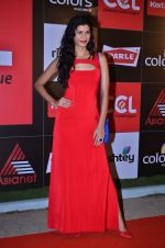at CCL new season red carpet in Grand Hyatt, Mumbai on 20th Dec 2013 (55)_52b54529690c2.JPG