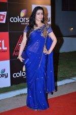 at CCL new season red carpet in Grand Hyatt, Mumbai on 20th Dec 2013 (75)_52b545312c5e6.JPG