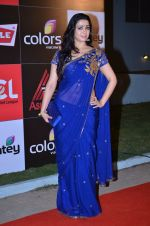 at CCL new season red carpet in Grand Hyatt, Mumbai on 20th Dec 2013 (76)_52b54532bbce9.JPG
