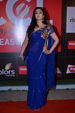 at CCL new season red carpet in Grand Hyatt, Mumbai on 20th Dec 2013 (79)_52b545363ef4e.JPG