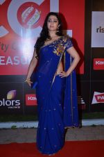 at CCL new season red carpet in Grand Hyatt, Mumbai on 20th Dec 2013 (80)_52b5453726552.JPG