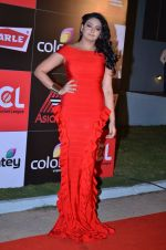 at CCL new season red carpet in Grand Hyatt, Mumbai on 20th Dec 2013 (89)_52b5453d6e1d1.JPG
