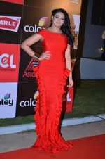 at CCL new season red carpet in Grand Hyatt, Mumbai on 20th Dec 2013 (90)_52b5453e37d56.JPG