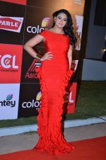 at CCL new season red carpet in Grand Hyatt, Mumbai on 20th Dec 2013 (91)_52b5453f48426.JPG