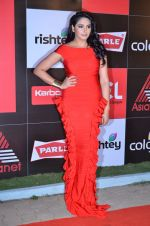 at CCL new season red carpet in Grand Hyatt, Mumbai on 20th Dec 2013 (92)_52b54540a178e.JPG