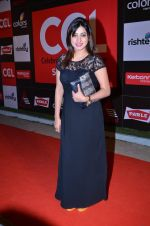 at CCL new season red carpet in Grand Hyatt, Mumbai on 20th Dec 2013 (170)_52b5455099c6b.JPG