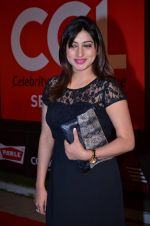at CCL new season red carpet in Grand Hyatt, Mumbai on 20th Dec 2013 (171)_52b545511cf09.JPG