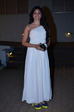 at CCL new season red carpet in Grand Hyatt, Mumbai on 20th Dec 2013 (175)_52b54551911de.JPG
